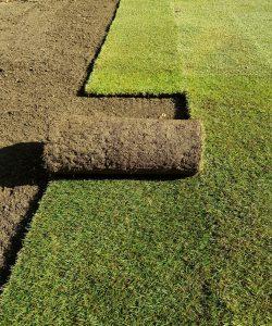 turf laying sydney