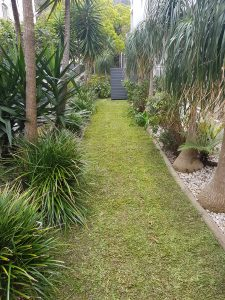 gardener northern beaches