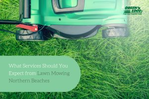 What Services Should You Expect Lawn Mowing Northern Beaches