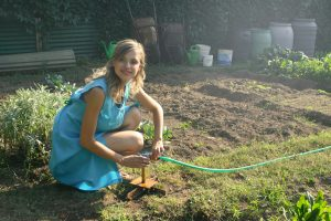 Lawn Care Northern Beaches -