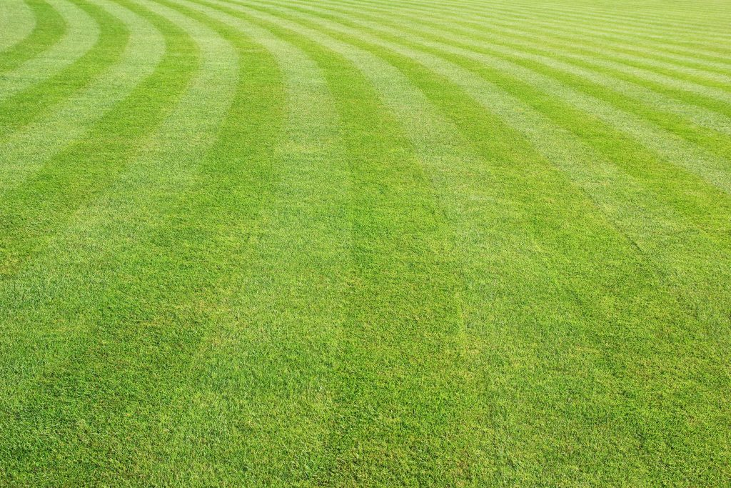 lawn mowing wahroonga