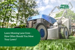 lawn mowing lane cove